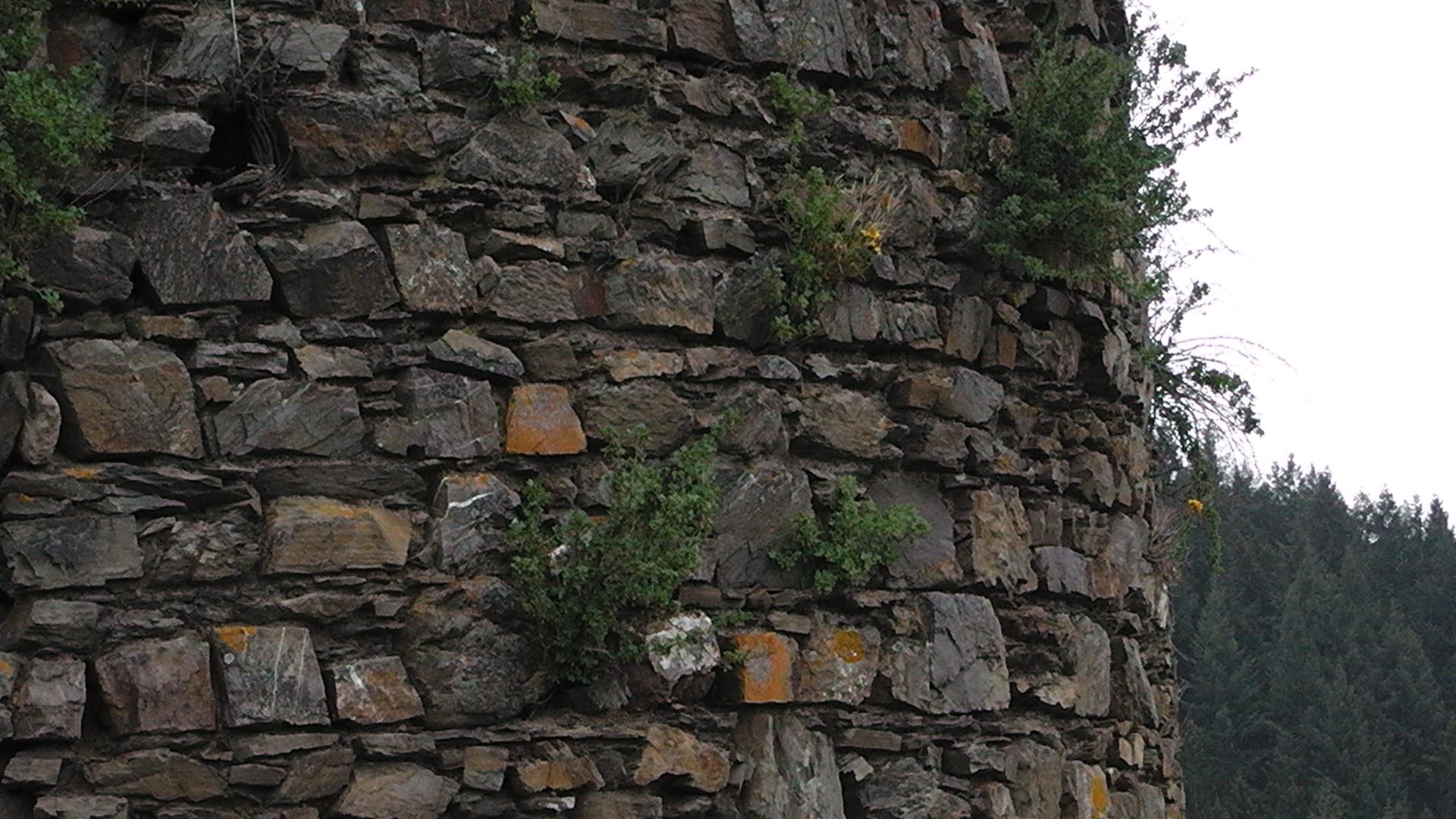 11-die-burgruine-virneburg