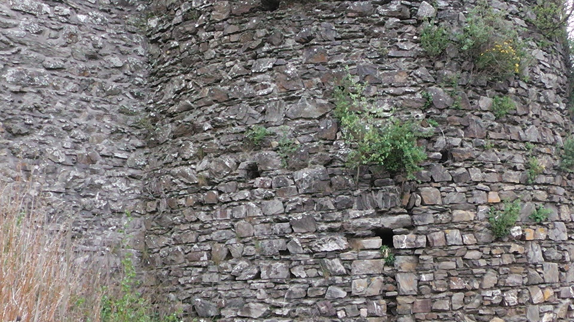 12-die-burgruine-virneburg