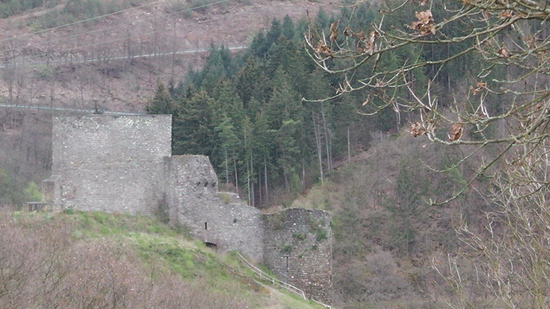 87-blick-auf-die-ruine-virneburg