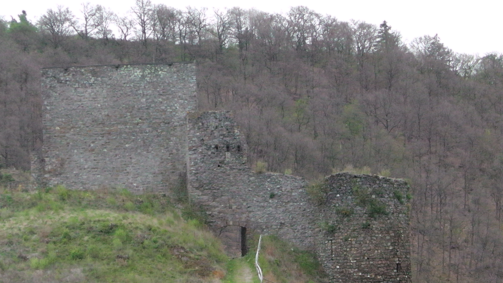 95-blick-auf-die-ruine-virneburg